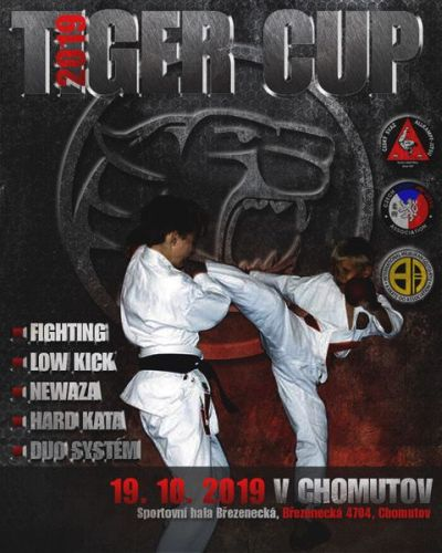 Tiger Cup Chomutov (3.kolo):br:Fighting, LowKick, Ne Waza, Duo System, Kata